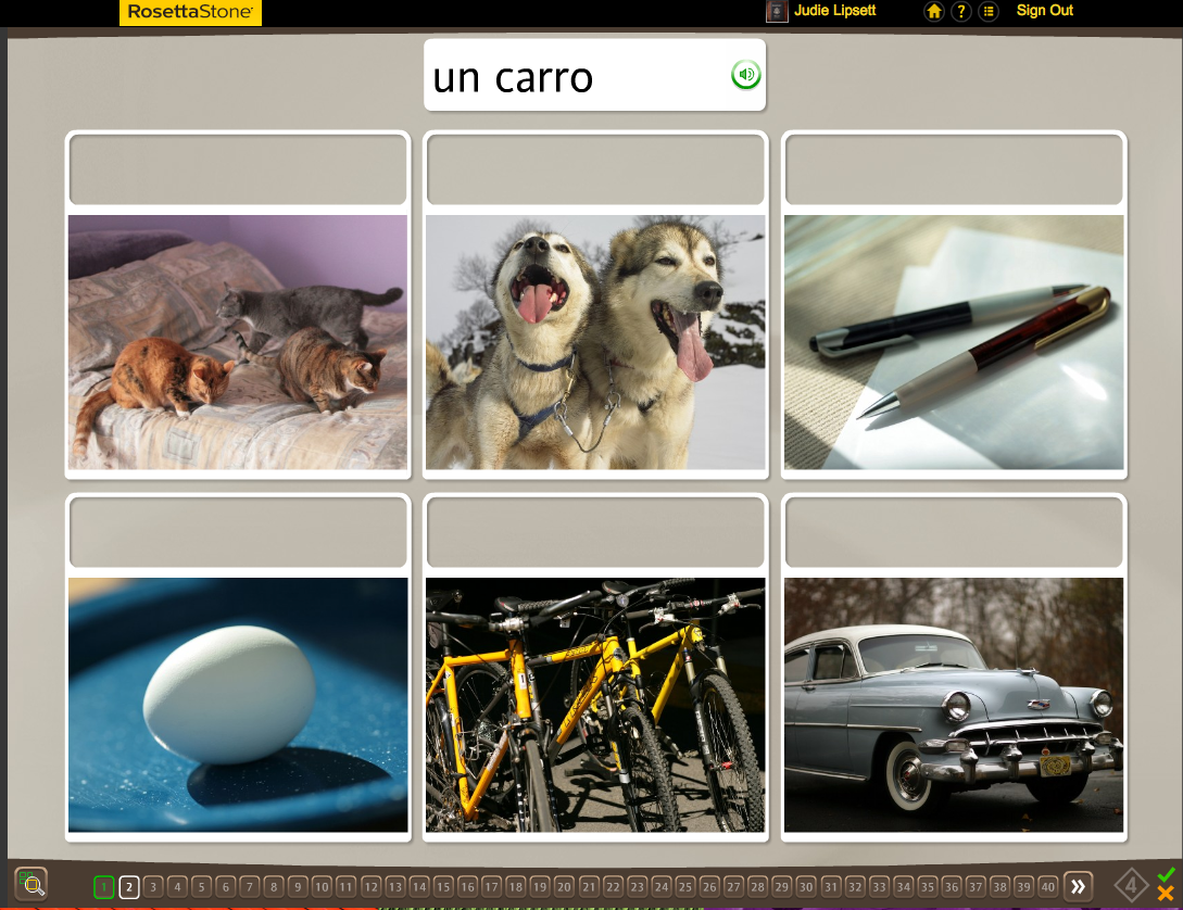GearDiary Teaching an Old Dog New Tricks: Week Two into the Rosetta Stone TOTALe Program