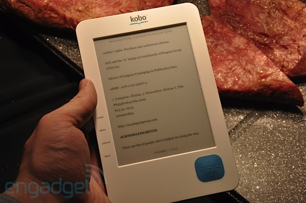 GearDiary Where Is the Dedicated eBook Reader Market Headed?