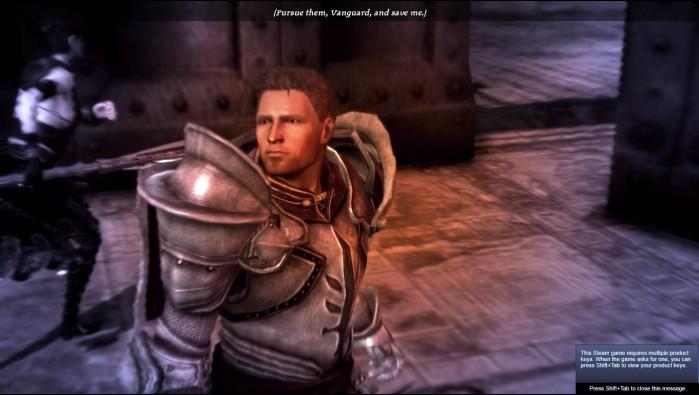 Dragon Age Darkspawn Chronicles ss12