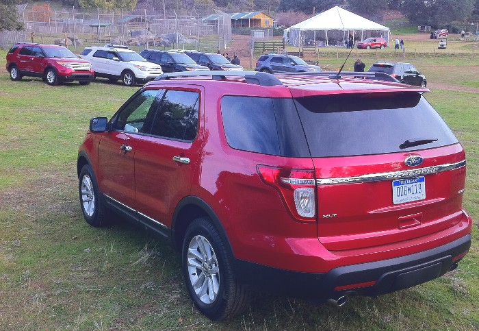 SUVs Ford Cars   SUVs Ford Cars   SUVs Ford Cars   SUVs Ford Cars   SUVs Ford Cars   SUVs Ford Cars   SUVs Ford Cars