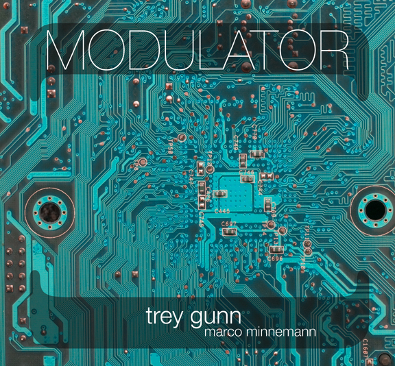 Music Diary Reviews:  Trey Gunn and Nik Bartsch Produce Two of My Favorite 2010 Recordings