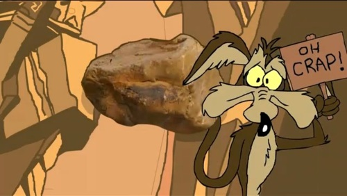 Wile E Coyote 127 Hours