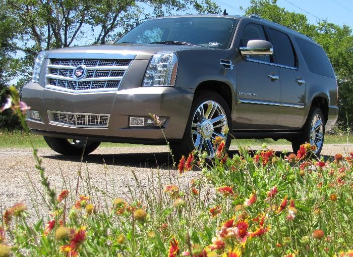 SUVs Cars Cadillac   SUVs Cars Cadillac   SUVs Cars Cadillac   SUVs Cars Cadillac   SUVs Cars Cadillac   SUVs Cars Cadillac
