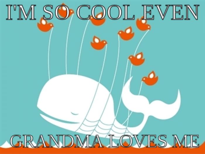 Twitter Social Networking Offbeat