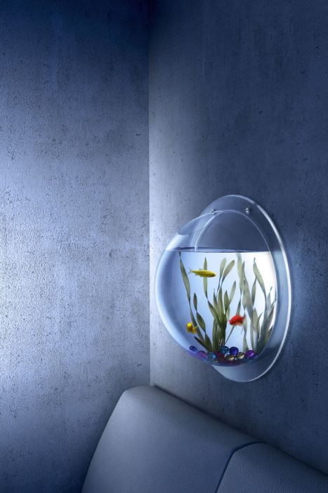 GearDiary Synthetik Park's Wall Aquarium Is Eye-Level Gorgeous