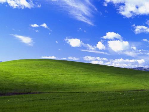 Pop Culture Microsoft Windows Microsoft