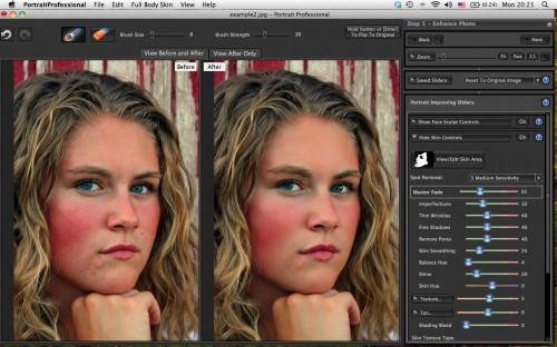 portrait professional studio 11 download