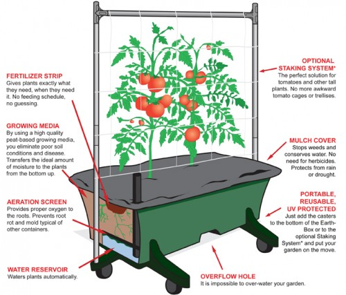 How To Start a Simple Heirloom Vegetable Garden from Scratch