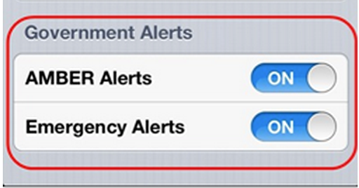 Security and Privacy iPhone