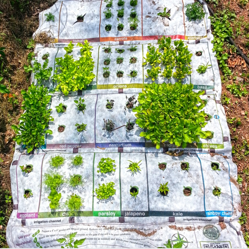 GearDiary The Nourishmat Starts Your Gardening Adventure with Ease!
