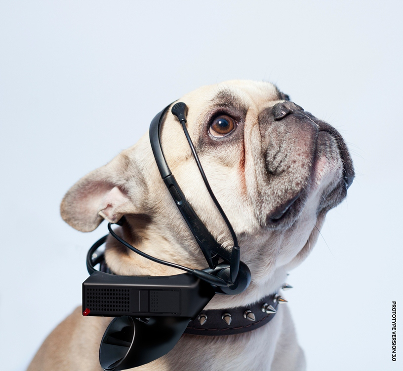 GearDiary 'No More Woof' Looks to Translate Dog Thoughts to Words, Raise Money on IndieGogo
