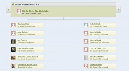 Genealogy   Genealogy   Genealogy   Genealogy   Genealogy   Genealogy   Genealogy