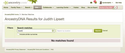AncestryDNA search for Lipsett