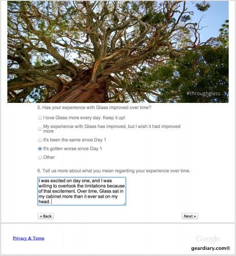 google glass survey 2
