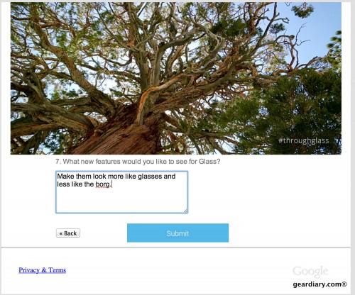 google glass survey 3