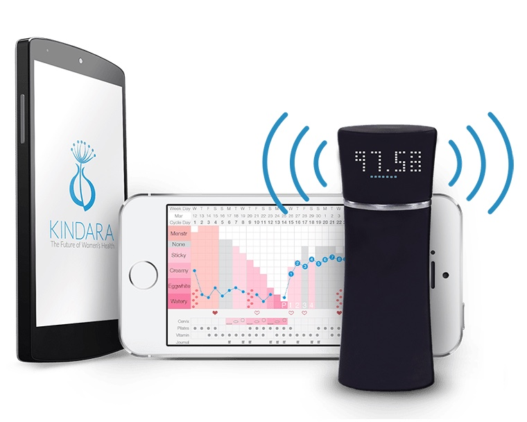 Wink by Kindara Brings Quantified Health Tracking to Fertility