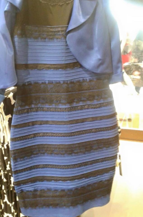 GearDiary So What's Up with '#TheDress'?