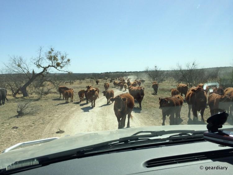 West Texas Traffic Jam