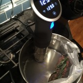 The Anova Precision Cooker is the Harbinger of the Sous-Vide Revolution