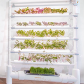 GearDiary The OPCOM GrowBox and GrowWall: Self-Contained and Soil Free Indoor Gardening
