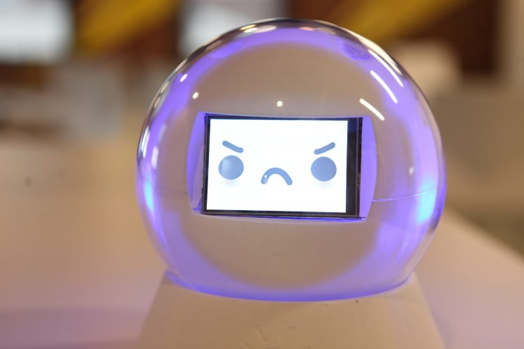 Leka Robot Engages Developmentally Challenged Children
