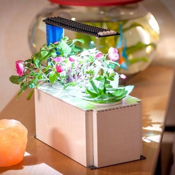 Click & Grow Creates an Affordable DIY Indoor Garden